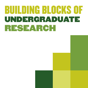 Building Blocks of Research logo